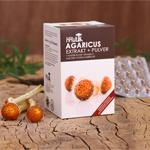 Agaricus Extrakt und Pulver (120 Kapseln)